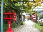 torii1