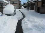 nieve3